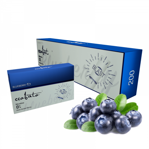 CCOBATO blueberry